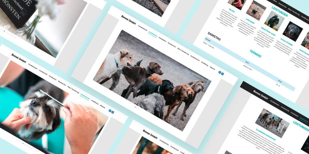 Werbeagentur, Agentur, Paladin, Design, Agentur-Paladin, Concept, @agenturpaladin, Remseck, Stuttgart, Ludwigsburg, Werbung, Start-Up, Retusche, Bildbearbeitung, Logo, Corporate Design, Kunst, Kreativ, Start-Up Agentur, Photoshop, InDesign, Illustrator, Layout, Publishing, Editorial, Photography, Agency, Design-Agency, Image, Marketing, Social Media Marketing, Print, Web, Online, Website, UX-Design, Webdesign, Web-Design, 0711, Project, Event, Post-Production, Creativity, Merchandise, Consulting, Beratung, Buch, Reproduktion, Offset, Retusche, Post Production, Retouching, Book Design, Art, Kunst, Print, Druck, Fotografie, photography, bones, bones-gmbh, bones gmbh, hunde, hundepension, hundeschule, hundesalon, dog, dogs, welpen, puppies, gassi, gassiservice, tierrettung, webinar, hundeinternat, tiernahrung, rene weber